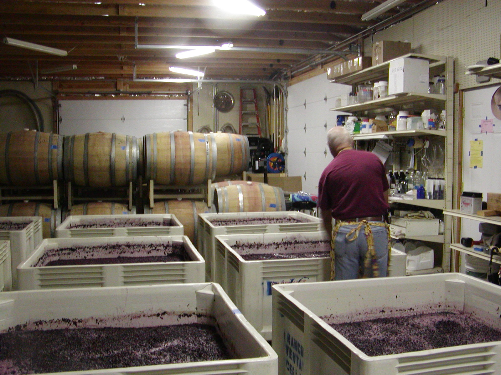Punching Down The Grapes