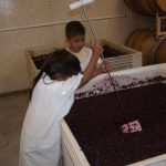 Twins punching down grapes